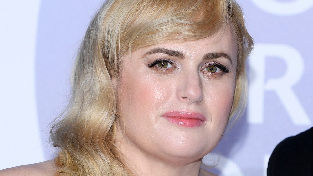 The Truth About Rebel Wilson Being Kidnapped At Gunpoint